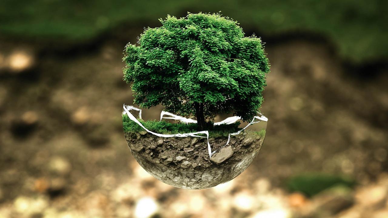 Lei dos Crimes Ambientais