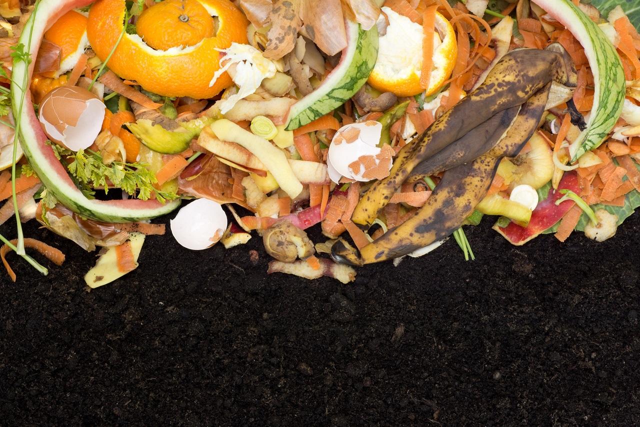 Como diminuir o desperdício de comida no setor alimentício?