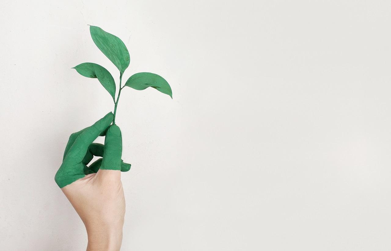 O que é e como criar uma cadeia de suprimentos sustentável?