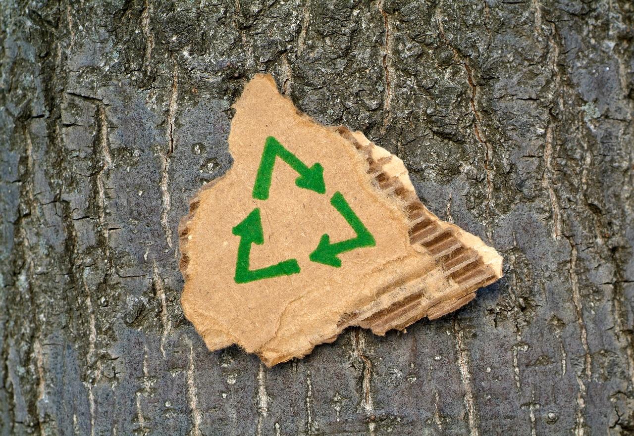 Como descartar e reciclar papelão corretamente?