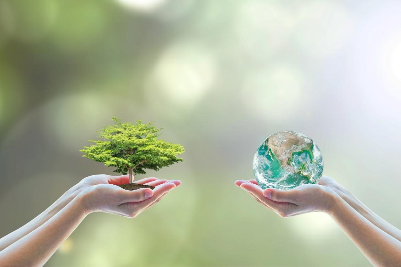 ESG: o que é e quais as melhores práticas?