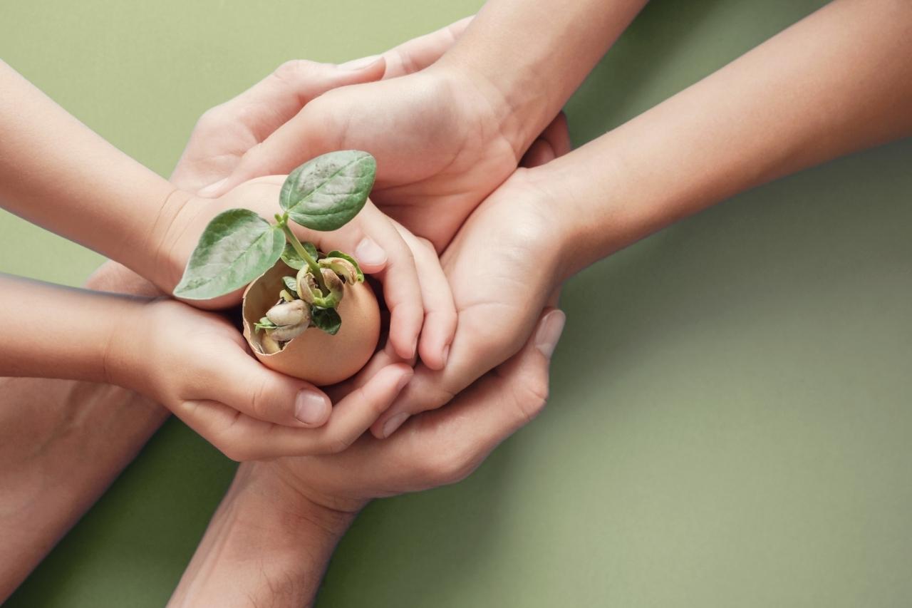 Sustentabilidade empresarial: quais hábitos adotar?