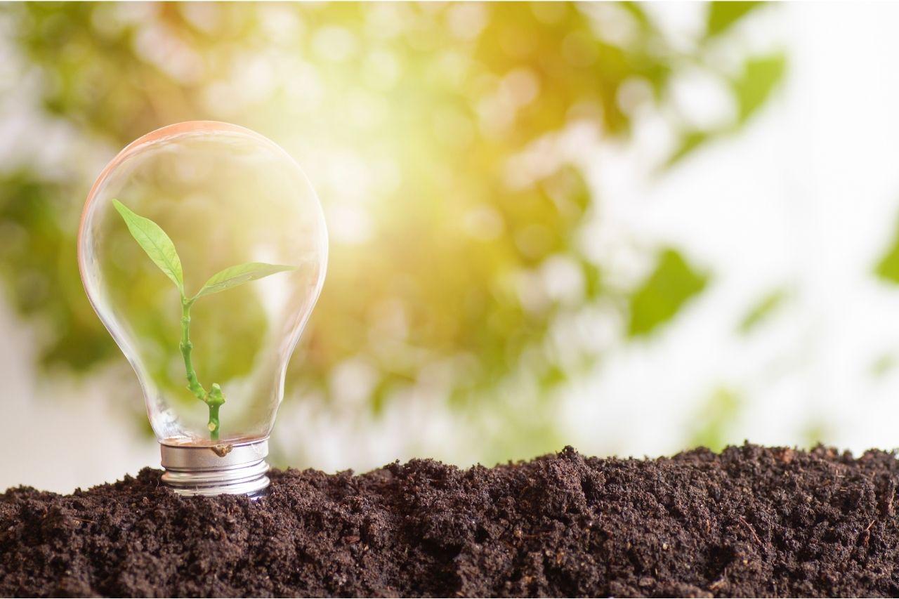 ESG e inovação: a união de sucesso!